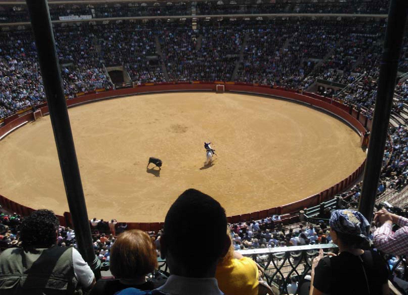 Stierkampf zu Pferd (rejoneo)
